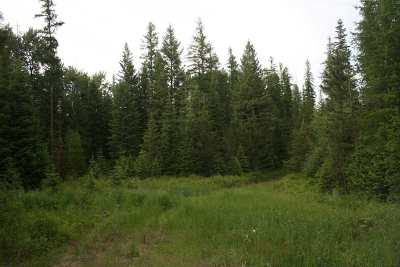 Residential Lots & Land For Sale: 4463 Aroundtoit Way