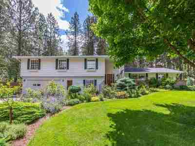 Veradale Single Family Home For Sale: 3929 S Best Ct