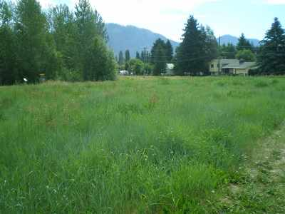 Chewelah Residential Lots & Land New: 801 Tamarack Ln