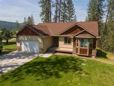 Nine Mile Falls WA Single Family Home New: $475,000