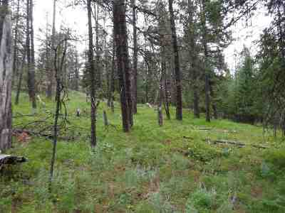 Residential Lots & Land For Sale: Bigfoot Ln