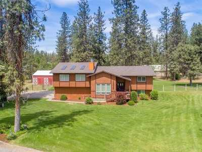 Nine Mile Falls WA Single Family Home New: $310,000