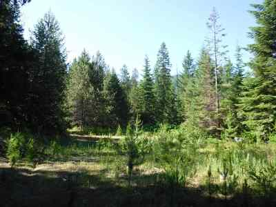 Valley Residential Lots & Land For Sale: 3706-K Waitts Lake Rd