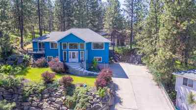 spokane Single Family Home New: 1215 S Kahuna Dr