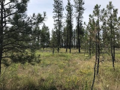 Tumtum Residential Lots & Land For Sale: 5742 Corkscrew Canyon Rd #Lot 3