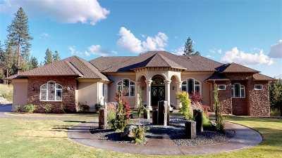 Spokane County Single Family Home For Sale: 8720 N Bruce Rd