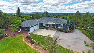 Spokane Single Family Home For Sale: 5925 S Dearborn Rd