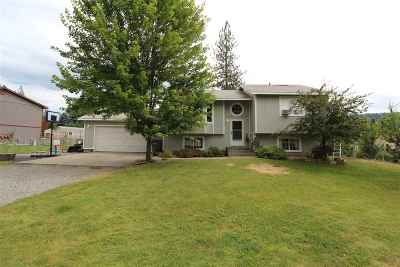 Nine Mile Falls Single Family Home For Sale: 102 E Wynot Dr