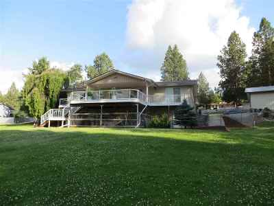 Veradale Single Family Home For Sale: 4126 S Sullivan Rd