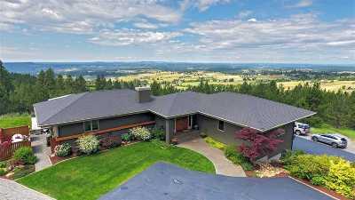 Spokane Single Family Home For Sale: 9410 S Labrador Ln