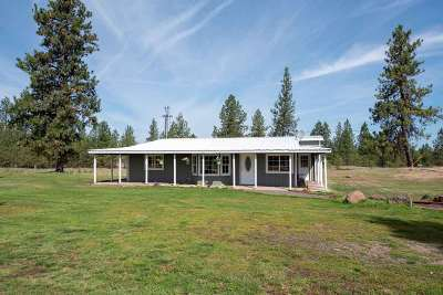 Cheney Single Family Home For Sale: 24304 S Columbia Basin Hwy