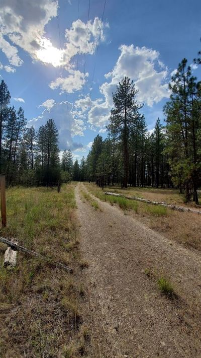 Tumtum Residential Lots & Land For Sale: Nhn Near Corkscrew Canyon Rd