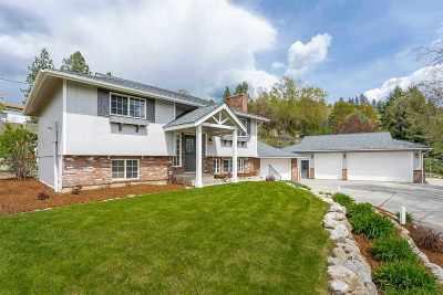 spokane Single Family Home New: 11019 E Upriver Dr