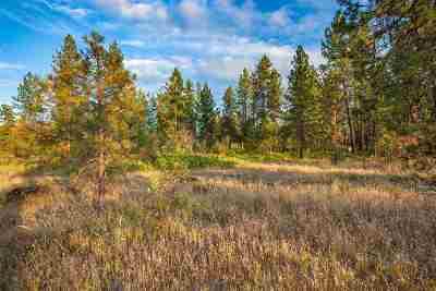 spokane Residential Lots & Land New: 3801 W Grandview Ave #Lot 1.3