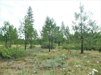 Kettle Falls Residential Lots & Land For Sale: Lot 112 Old Kettle Rd