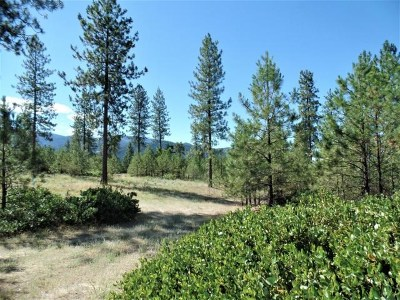 Kettle Falls Residential Lots & Land For Sale: Lot 108 Old Kettle Rd