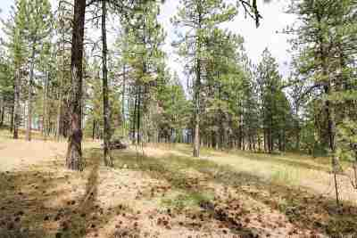 Nine Mile Falls Residential Lots & Land For Sale: 17xxx N Valley Rd