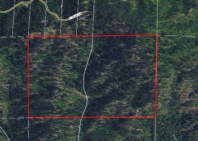 Otis Orchards Residential Lots & Land For Sale: Nka Mitchell Rd