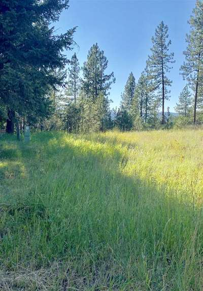 Valley Residential Lots & Land For Sale: 3294 Viewridge Ln