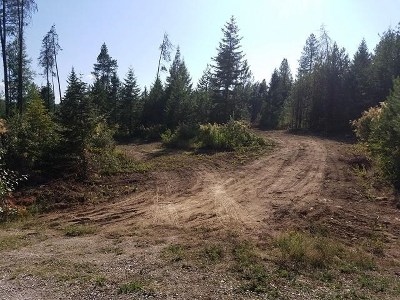 Valley Residential Lots & Land For Sale: 000 B-4 Bradbury Way