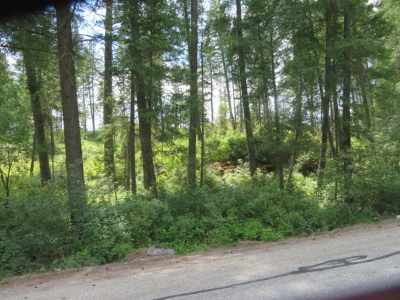 Chattaroy Residential Lots & Land For Sale: Deer Park Milan Rd