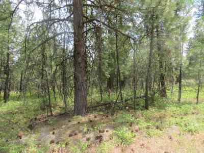 Residential Lots & Land For Sale: 0 Unknown Calispel Rd