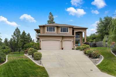 Spokane Single Family Home For Sale: 5505 S Southview Ln