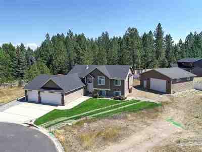 Spokane Single Family Home For Sale: 1348 E Carriage Ct