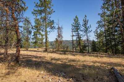 spokane Residential Lots & Land For Sale: Nka Five Mile Rd #Lot 1