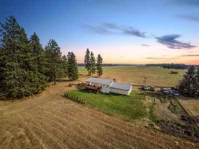 Spokane County Single Family Home For Sale: 42702 N Sherman Rd