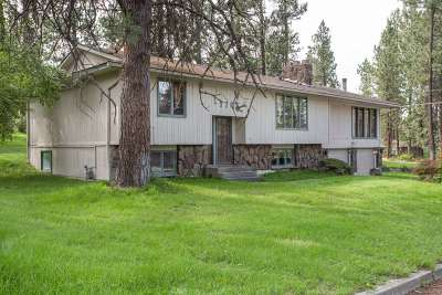 Spokane Single Family Home New: 1706 S Bettman Rd
