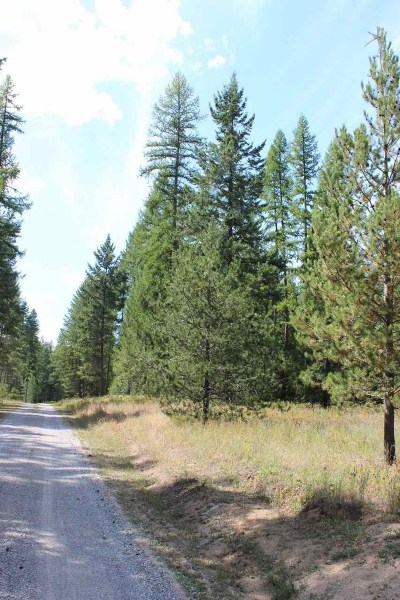 Residential Lots & Land New: Xxx Oregon Way #LOT 3