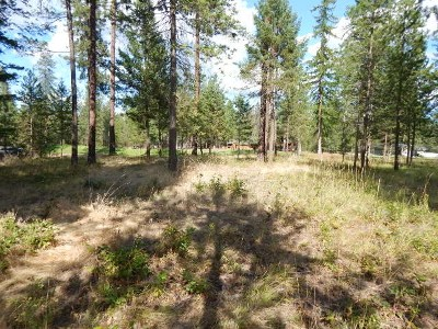 Chewelah Residential Lots & Land New: 843 Hogans Way