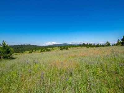 Deer Park Residential Lots & Land For Sale: 53xx S Swenson Rd #5801536-