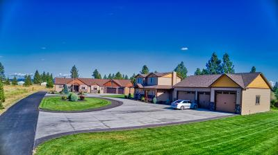 Spokane County Single Family Home For Sale: 5915 S Assembly Rd