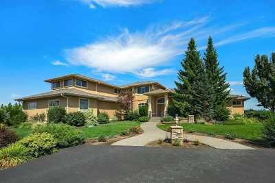 Spokane Single Family Home For Sale: 4908 N Indian Bluff Ln