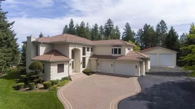 Spokane County Single Family Home For Sale: 10032 N Fairview Rd