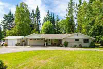 Ione Single Family Home For Sale: 221 Sullivan Lake Rd