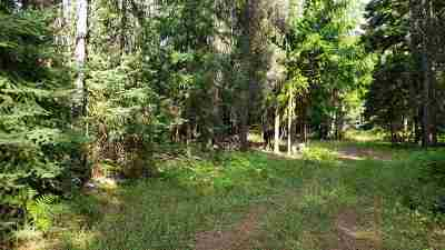 Residential Lots & Land For Sale: 390182 Highway 20