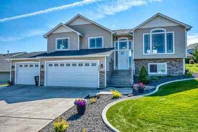 spokane Single Family Home For Sale: 8804 E Vista Park Dr
