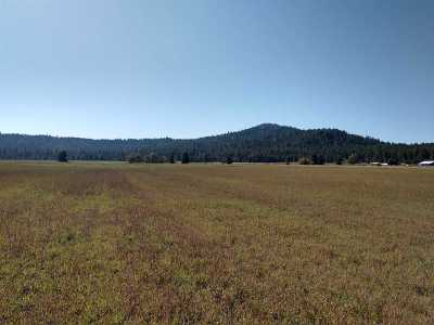 Residential Lots & Land For Sale: 50xx W Casberg Burroughs Rd #Lot 3