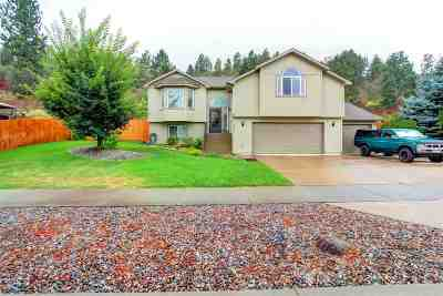 Spokane Valley Single Family Home For Sale: 18004 E 12th Ct