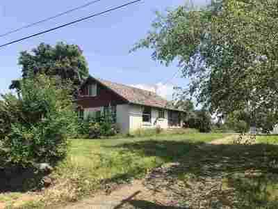 spokane Single Family Home For Sale: 503 S McKinnon Rd