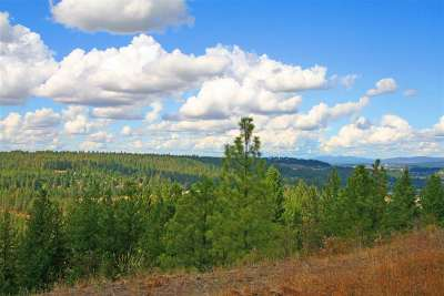 spokane Residential Lots & Land New: 5284 S Falcon Point Ct