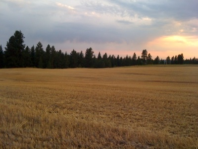spokane Residential Lots & Land New: S South Meadows Ln