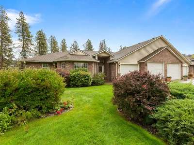 spokane Single Family Home New: 14210 N Wanderview Ln