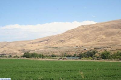 Adams County, Benton County, Franklin County, Garfield County, Grant County, Walla Walla County, Yakima County Residential Lots & Land For Sale: Lot 10 Pleasant Drive