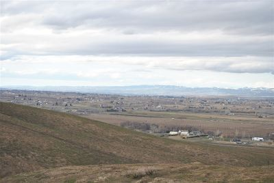 Adams County, Benton County, Franklin County, Garfield County, Grant County, Walla Walla County, Yakima County Residential Lots & Land For Sale: 28804 Richards Rd