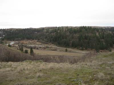 Residential Lots & Land For Sale: 21 Red Tail Ridge