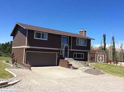Kennewick Single Family Home For Sale: 99606 E Reata Road